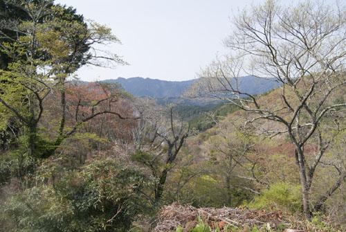 La montagne de Yoshino, majestueuse et pleine de couleurs, même sans fleurs de cerisiers