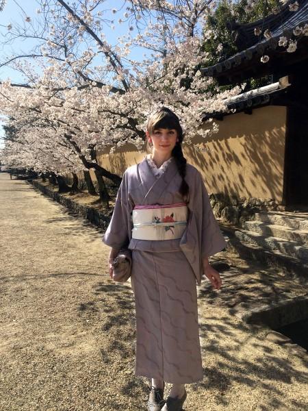 Devant l'enceinte du temple Horyuji