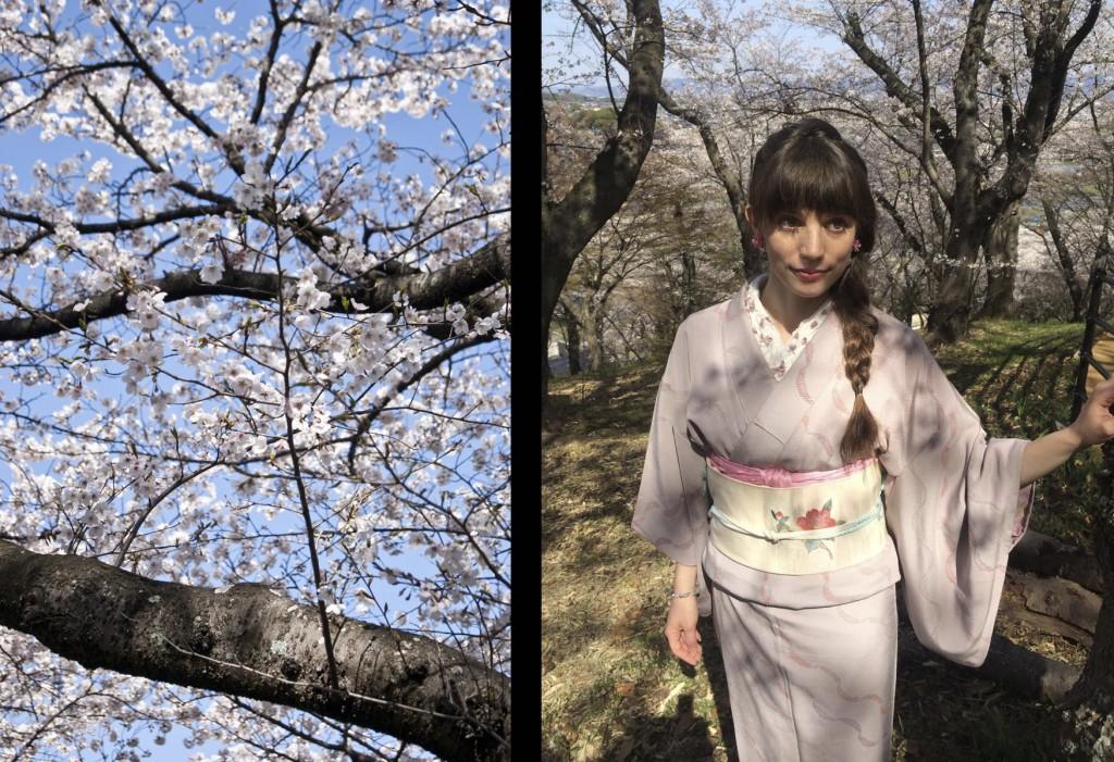 kimono komon en chirimen, fukuro obi floral