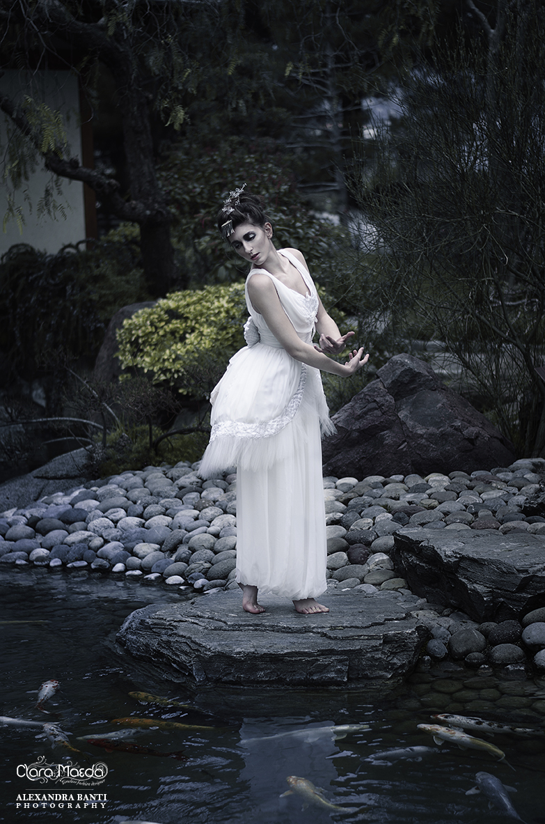 robe cygne, swan dress